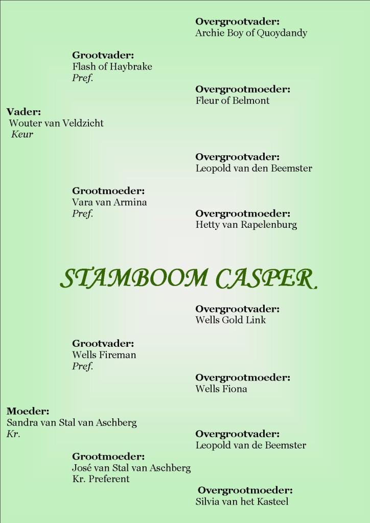 Stamboom Casper
