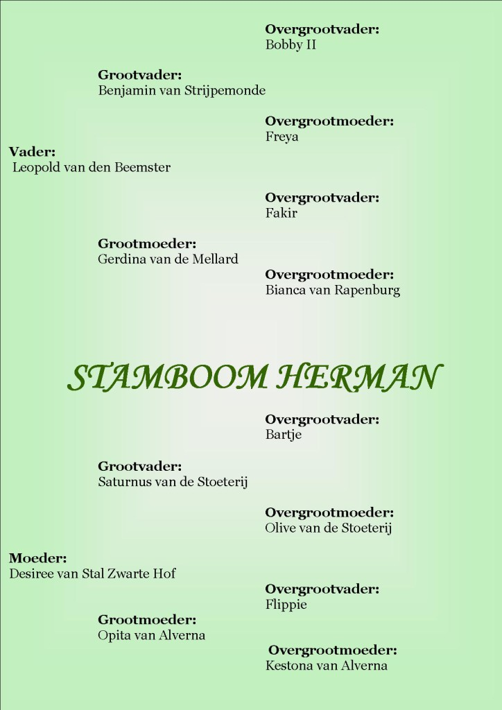 Stamboom Herman