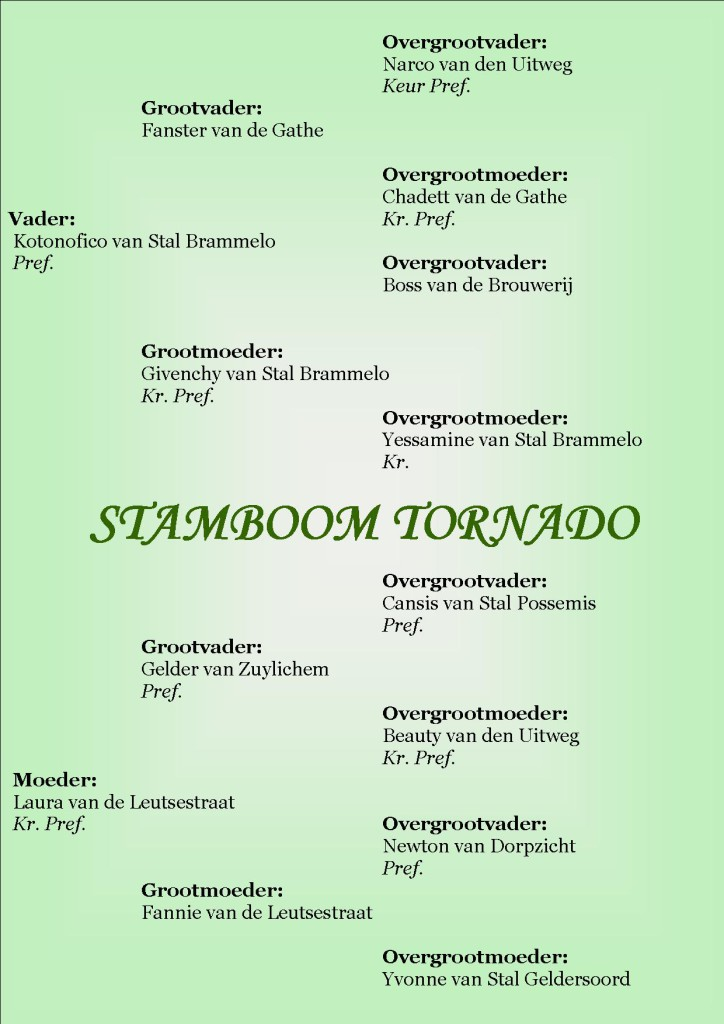 Stamboom Tornado