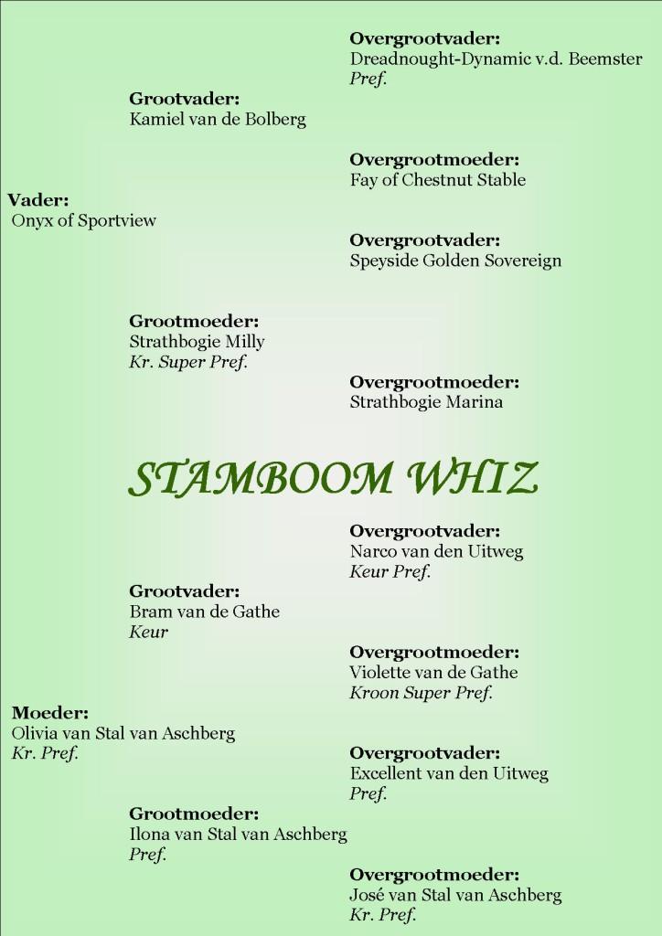 Stamboom Whiz