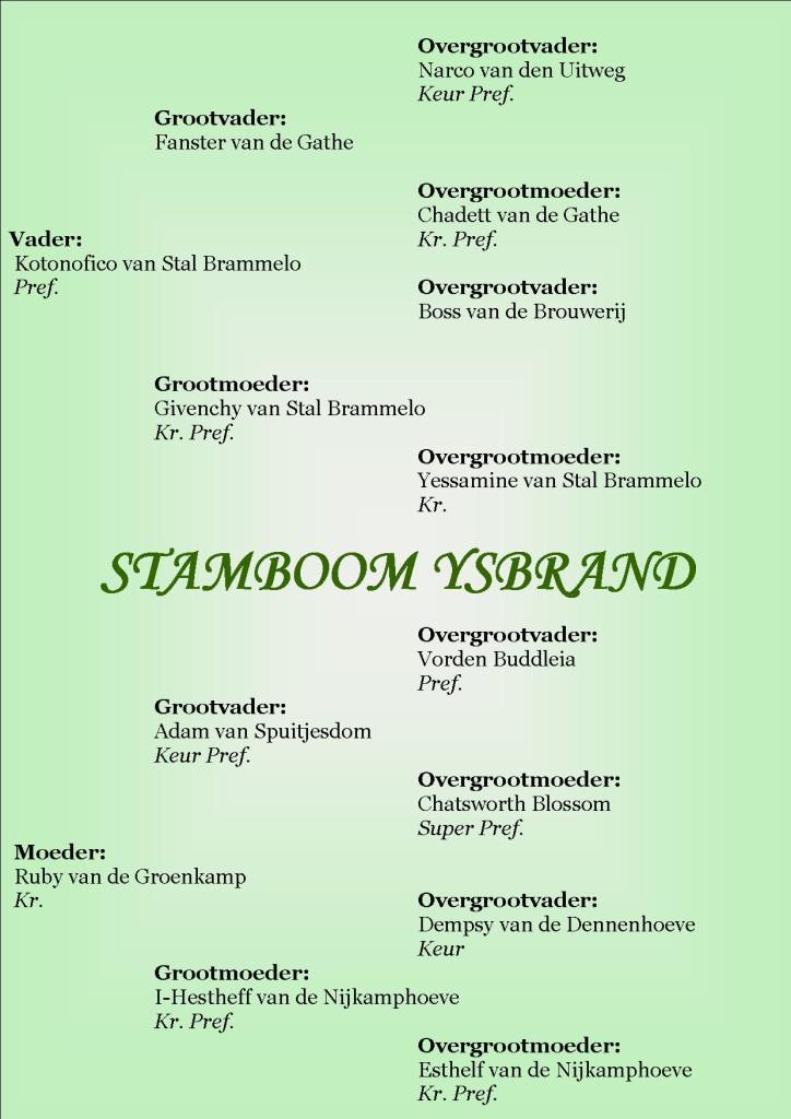 Stamboom Ysbrand